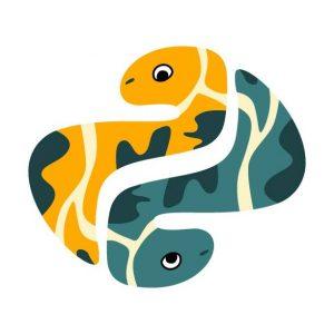 Python Programming Snake